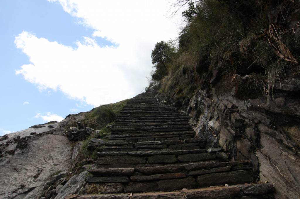 Those wretched man- made steps through the trail